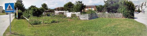 Ureditev pasjega parka v Kranju